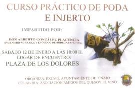 Curso práctico de poda e injerto en Lanzarote